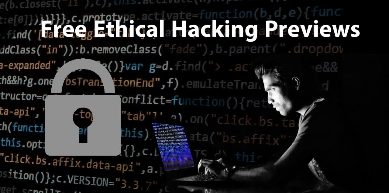 Ethical Hacking Previews