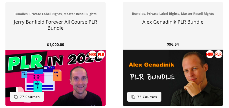 PLR video course bundles